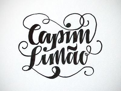 Logo design, sketch #2 lettering typography logo design sketch calligraphy handmade handwritten script