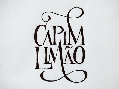 Logo design, sketch #3 lettering typography logo design sketch calligraphy handmade handwritten script