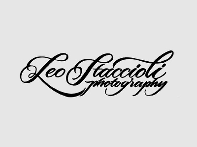Logo sketches 01 lettering typography logo design sketch calligraphy handmade handwritten script