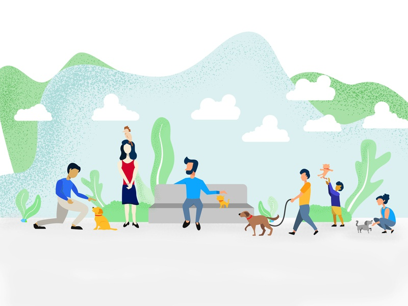 Socialize Your Pets app design sketch colors illustration animals pets