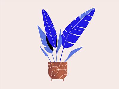 Plants simple flower greenery bio eco vegan plant illustration plants plant nature character design illustration graphic design