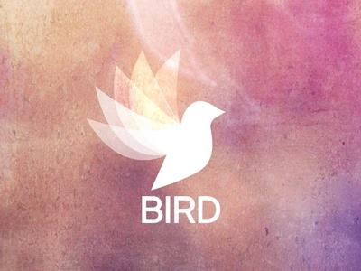 Bird Logo branding merchandising vector animal illustrator bird logo