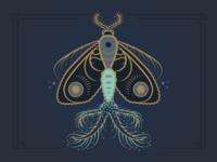 Moth No. 2