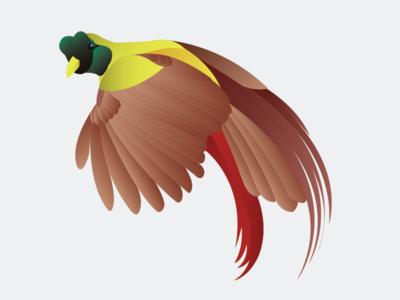 Bird of Paradise digital art illustration