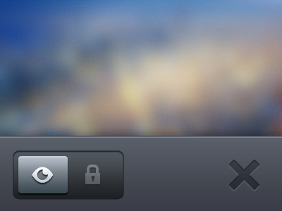 Public & Private iPhone toggle selector private public toggle iphone app selector menu upload delete cancel ui apple