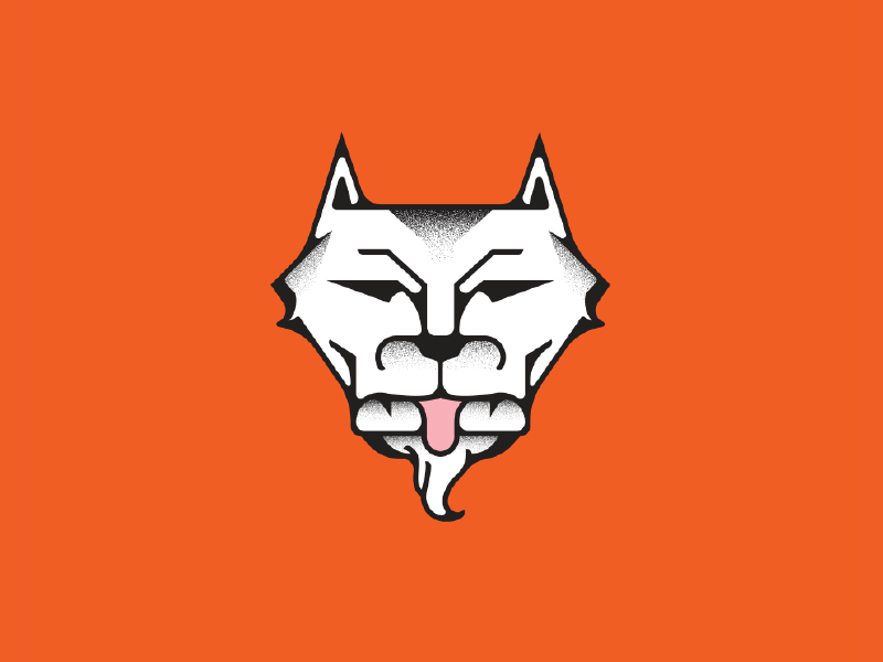 Tiger or Wolf? orange monoline line work lines color illustration tiger wolf