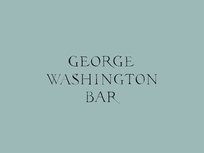 George Washington Bar hand-made lettering typography custom mark hospitality bar restaurant packaging brand branding logo