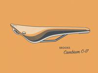 Brooks Cambium C-17