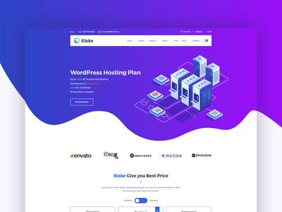 Slake Domain Hosting Website Concept