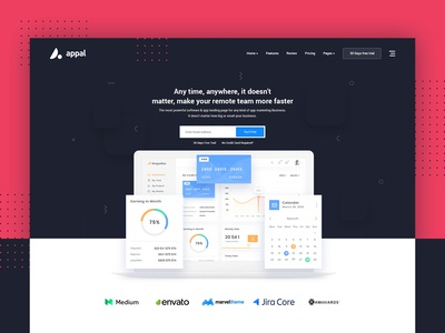 Appal Premium Saas Application Software Landing page Concept