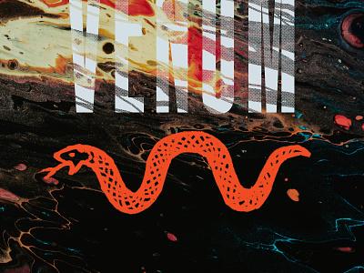 """Venom"" - Snake Illo - Round 2 snake logo apparel venom serpent animal snake texture brushes gritty typography hand drawn drawing branding illustration graphic design design art direction"