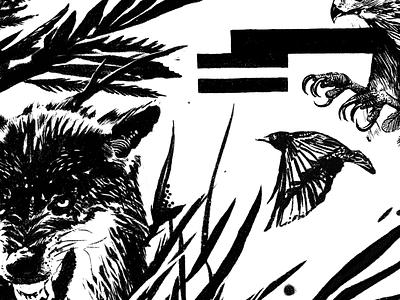 Bye Bye Birdie - Illustration wildlife nature outdoors hunting talons michigan digital illustration procreate drawing hand drawn illustration full circle design art direction animals predators bird wolf