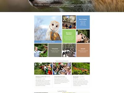 Lindsay Wildlife Experience lindsay wildlife experience grid web design web