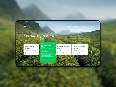 Concept Web design 01