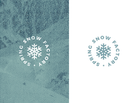 found from Archive factory spring snowflakes snow wordmark logo