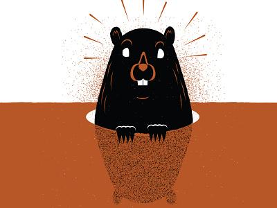 Happy Groundhog's Day! groundhogsday editorial groundhog illustration