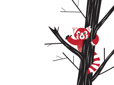 Illustrated Science 143 - Six Pack 6 cute red panda illustrated science science illustration editorial science illustration