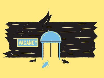 Summer Science Spots 02 bugs hotel ants science activities summer magazine illustration magazine editorial bbc science illustration