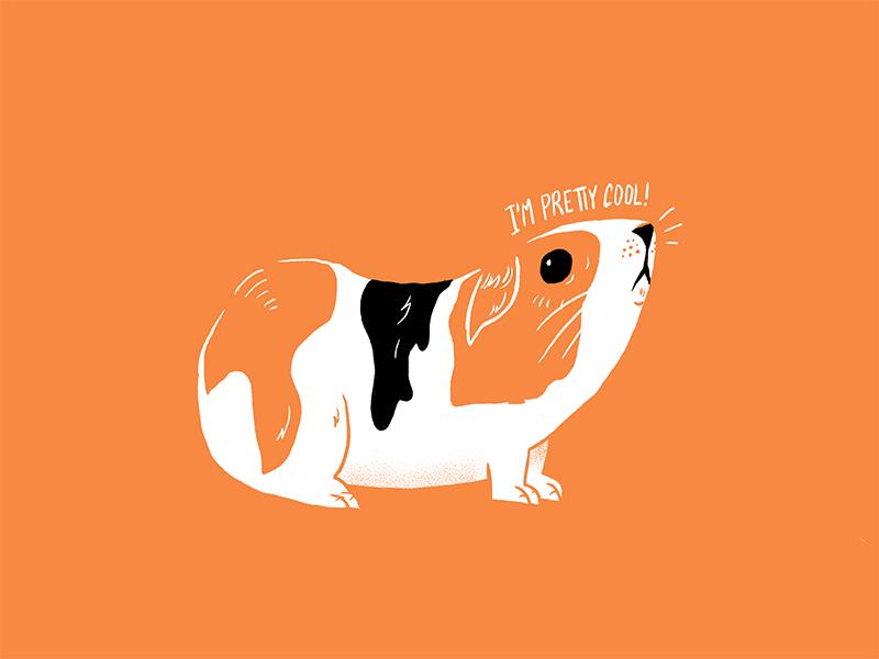 Guinea Pig procreateclub sketchbook texture process procreate guinea pig editorial illustration