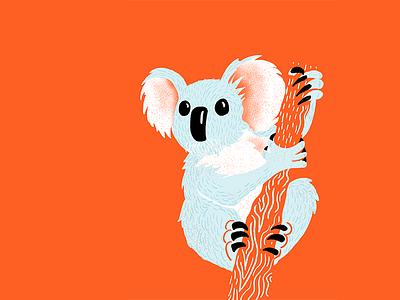 Australia australia koala texture editorial illustration editorial illustration
