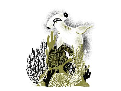 Sea Creatures - 06 procreate underwater ocean editorial illustration editorial illustration shark week hammerhead shark