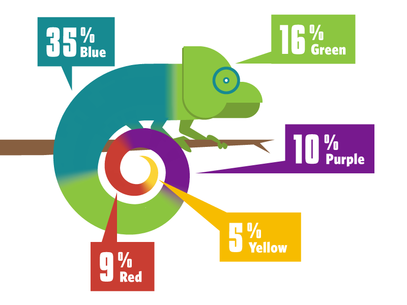 America's Favorite Colors graphic infographic colors chameleon