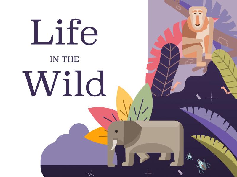 Life in the Wild (wip) elephant rainforest forest wildlife malaysia extinct animals