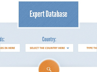 Database Search search database ui texture button orange blue form