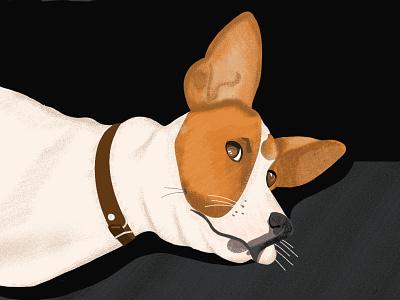 Dog Illustration ipad painting art drawing dog procreate illustrator illustration