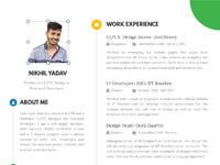Nikhilyadav resume
