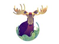Deer Series - Moose