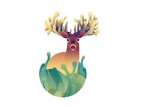 Deer Series - White Tailed Buck