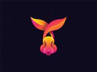 rabbit rabbits rabbit
