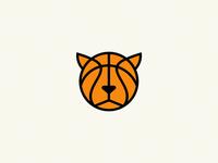 basketball / cat