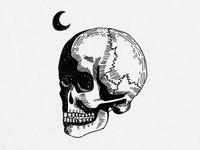 Skull illustration for clothing brand