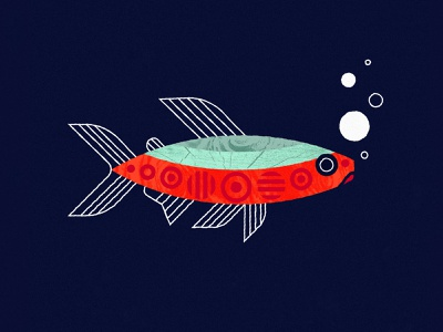 Neon Tetra illustration geometric fish tank fish aquarium neon