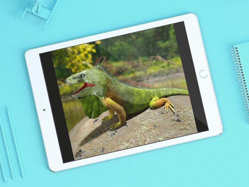 Iguana 3D Render Old Work poly wildlife reptile design render autodesk maya 3d