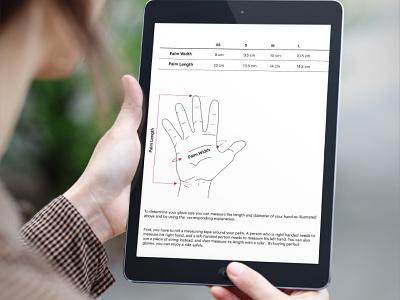 Display  ui design web design illustration size chart