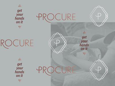Procure Branding type logo vector typography design