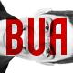 Bruno Silva ( Bua )