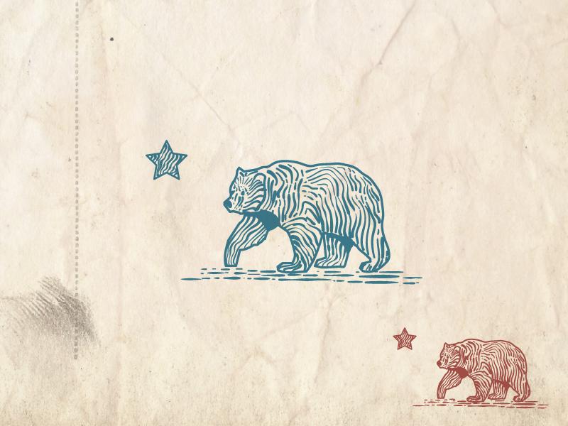 Bear wacom illustrating drawing inking line ink linocut engraving bear