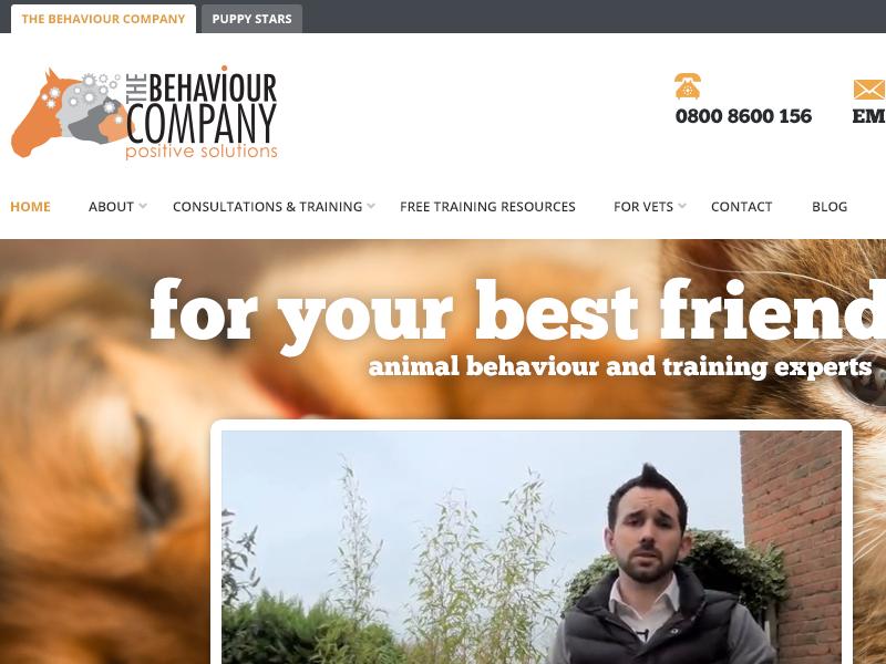 The Behaviour Company website banner logo navigation video