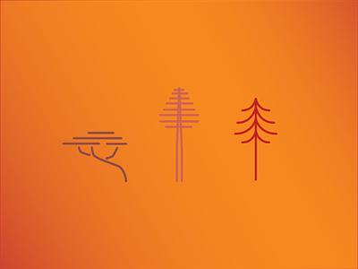 California Trees redwood sequoia monterey cypress california