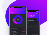 IOWallet UI Kit - Report and Account screens