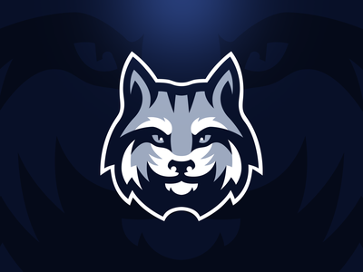 Lynx Logo Design bobcat lynx vector mascot logo sports logo illustrator design brand illustration team logo branding mascot logo