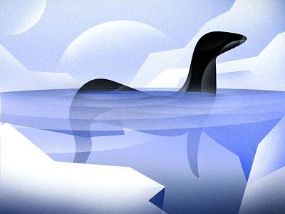 Ice animal vector ocean seal sea branding logo design graphic design illustration