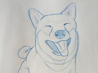 Zero Fox Dog