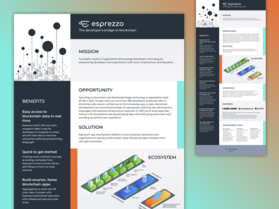 Pitch overview one pager