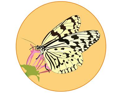 Butterflys badges