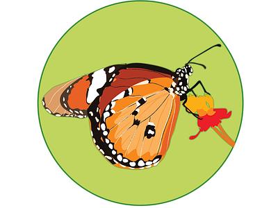 More butterflys illustration sketch badges